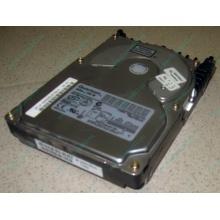 Жесткий диск 18.4Gb Quantum Atlas 10K III U160 SCSI (Камышин)
