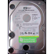 Б/У жёсткий диск 500Gb Western Digital WD5000AVVS (WD AV-GP 500 GB) 5400 rpm SATA (Камышин)